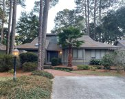 6 Wood Duck  Court, Hilton Head Island image