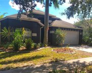 6737 Monarch Park Drive, Apollo Beach image