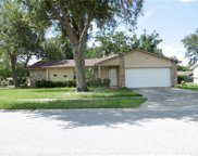 3002 Moss Valley Place, Winter Park image