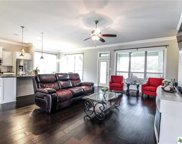 10406 Windy Pointe Drive, Temple image