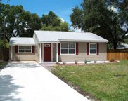 3610 S Renellie Drive, Tampa image