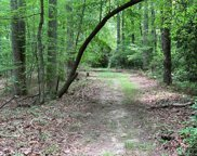 2e  Reserve Road, Pisgah Forest image