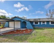 656 Flamingo Drive, Apollo Beach image