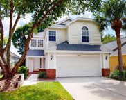 5117 Sterling Manor Drive, Tampa image