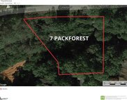 7 Packforest Road, Taylors image