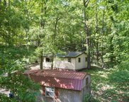 239 Little Dogwood Lake  Road, Burfordville image