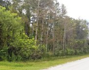 N 87th Trail, Palm Beach Gardens image