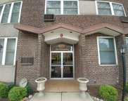 1333 West Touhy Avenue Unit 303, Park Ridge image