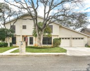 4526 Honey Locust Woods, San Antonio image