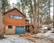 15958 Old Stagecoach Road, Pine image