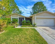 15909 Country Place, Tampa image