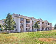 12338 West Dorado Place Unit 303, Littleton image