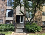 182 Dunteman Drive Unit 101, Glendale Heights image