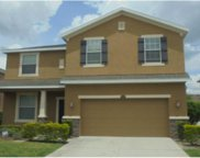 12310 Fairlawn Drive, Riverview image