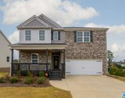 346 Blackberry Blvd, Springville image