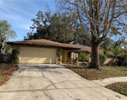 1533 Windmill Pointe Road, Palm Harbor image