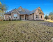1011 Holly Tree Trace, Bishop image