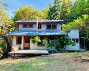 1451 Ross Road, Garberville image