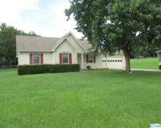 29883 Donnely Drive, Madison image