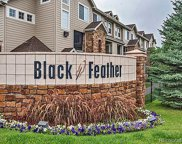 431 Black Feather Loop Unit 811, Castle Rock image