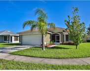 12108 Pepper Creek Court, Riverview image