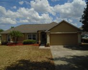 11550 Pineloch Loop, Clermont image