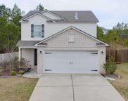 233 Chesser Reserve Drive, Chelsea image