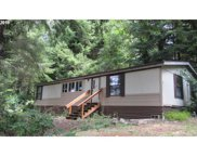 93850 RAYMOND  LN, North Bend image