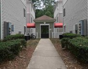 1351 Crab Orchard Drive Unit #204, Raleigh image