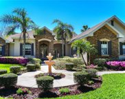 6011 Kestrel Point Avenue, Lithia image