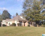 445 Hillstone Dr, Pell City image