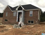 645 Woodland Cir, Odenville image