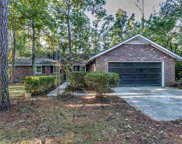 209 Old Serenity Dr., Pawleys Island image