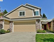 750 Shady Tree Ct, Danville image
