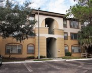 17112 Carrington Park Drive Unit 933, Tampa image