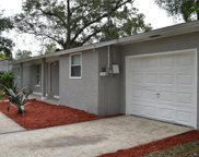10005 N Mitchell Avenue, Tampa image
