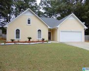 229 Summer Brook Ln, Alabaster image