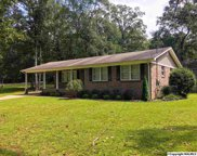 1449 Bob Jones Road, Scottsboro image
