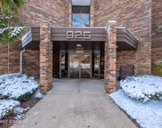 925 Spring Hill Drive Unit 207, Northbrook image