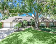 17916 Simms Road, Odessa image