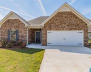 164 Moores Spring Rd, Montevallo image