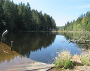 253 acres Gm1 Forest Service Rd, Bremerton image