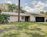 2564 Knotty Pine Way, Clearwater image