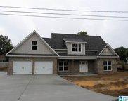 303 Nichols Way, Trussville image