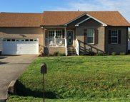 548 Bluff View Dr, Pegram image