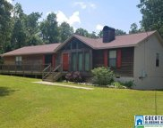 75 Smith Spur Rd, Odenville image