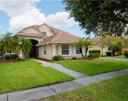 14425 Dover Forest Drive, Orlando image