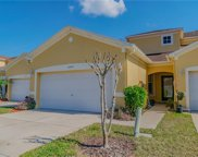 11009 Blaine Top Place, Tampa image