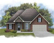24253 Cliftmere Ave, Plaquemine image
