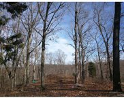 71 +/- Acres  Lot 1 Wedgewood, House Springs image